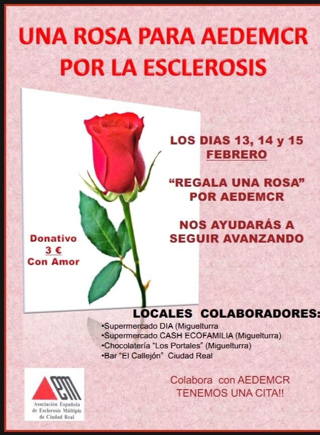 Regala una rosa por Aedemcr